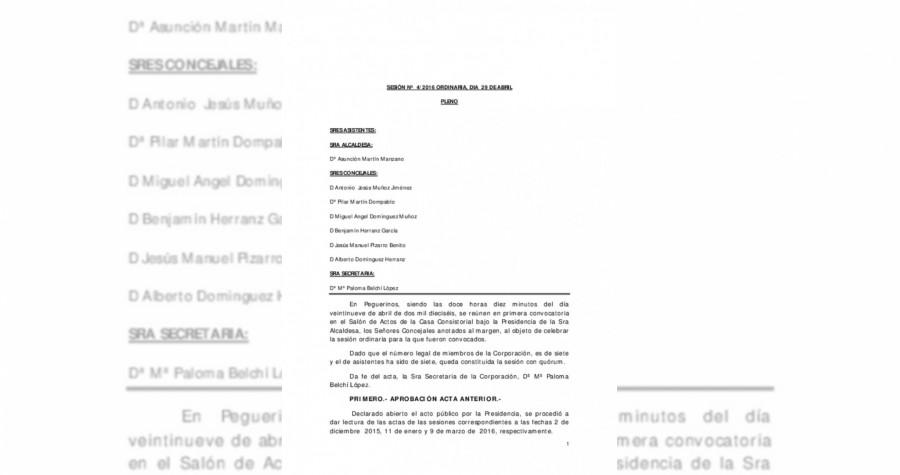 actadepleno_216