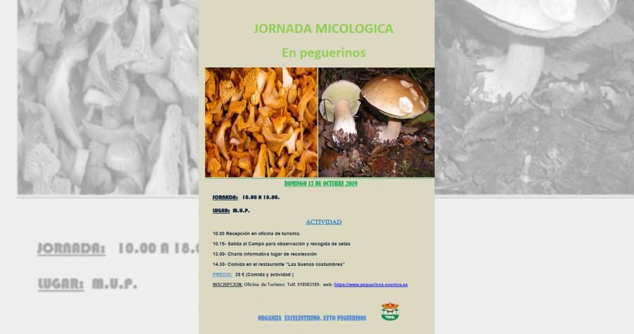 Jornada micologica 2019