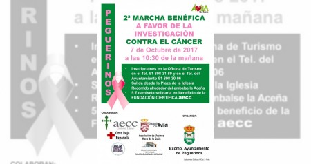 Cartel 2 marcha benefica contra el cancer