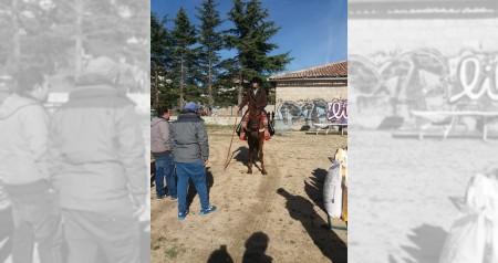 Feria de ganaderia 2018 07