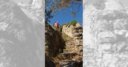 Ruta al monte fortines 06