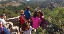 Ruta al monte fortines 15