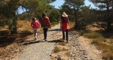 Ruta al monte fortines 19