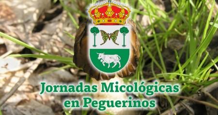 Jornadas micologicas_en peguerinos